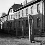 Auschwitz Concentration Camp 2